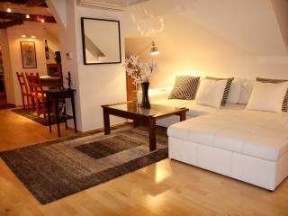 Five Star Central Penthouse Prague 1 16th Centry - Prague vacation rentals