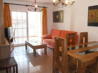 Apartment in Burriana beach - Nerja vacation rentals