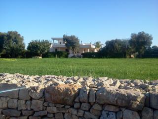 B&B  tra gli ulivi e il mare di Puglia - Speziale vacation rentals