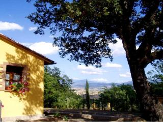Nice Farmhouse Barn with Internet Access and A/C - Sasso d'Ombrone vacation rentals