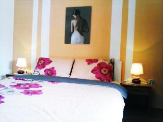 1 bedroom Condo with Short Breaks Allowed in Vis - Vis vacation rentals