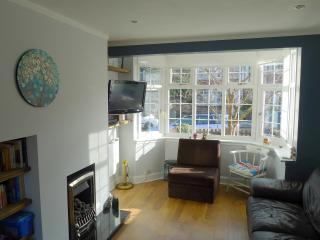 Bright family home West London - Twickenham vacation rentals