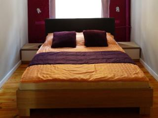 At the Guide's Apartment - Torun vacation rentals