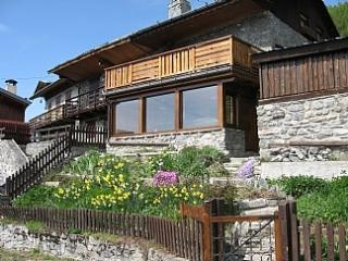 chalet regain ski in ski out plan peisey - Plan Peisey vacation rentals