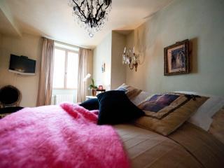 PROMOTION ETE Maison Centre Ville  FONTAINEBLEAU - Fontainebleau vacation rentals