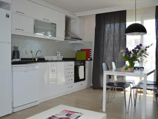 Romantic 1 bedroom Apartment in Seferihisar - Seferihisar vacation rentals
