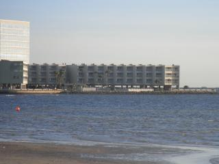 Tampa Bay FL - Waterfront Vacation Condo - Tampa vacation rentals