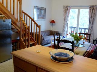 2 bedroom Condo with Internet Access in Bolquere - Bolquere vacation rentals