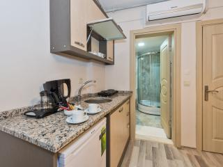 Taxim Square Economic Home - Istanbul vacation rentals