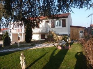 Le Gite Au Cheval D'Or 15 mn du puy du fou Vendée - Les Herbiers vacation rentals