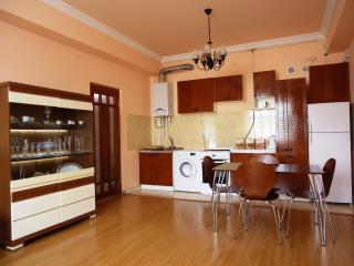3 room apt. near Republic Square - Yerevan vacation rentals