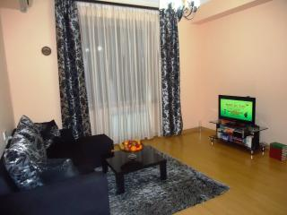 3 room apt. near Republic Square - Yerevan vacation rentals