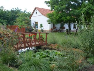 Peaceful quiet Nemeth farm appartman - Szeged vacation rentals