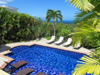 Perfect Villa with Internet Access and Dishwasher - Isla de Vieques vacation rentals