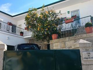 The Wine House in Douro   Casa da Adega do Chão - Lamego vacation rentals