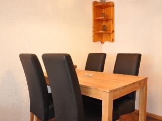 Nice Condo with Sauna and Television - Nendaz vacation rentals