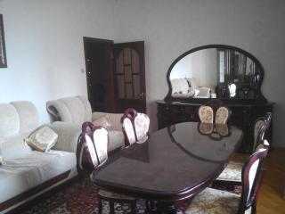 Big and sunny apartment - 5 min bus - Security - - Baku vacation rentals