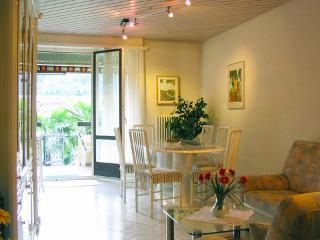 Häusler-Zwyer ~ RA11420 - Ticino vacation rentals