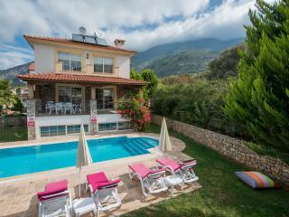 Kibele Villa Bacchus Sleeps 9 (5 Bedrooms) - Ovacik vacation rentals