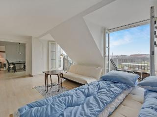 Penthouse apartment in Copenhagen with 4 balconies - Copenhagen vacation rentals