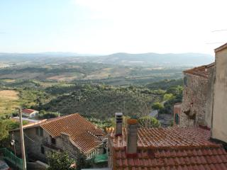 Charming 2 Bedroom House in Tuscany - Campagnatico vacation rentals