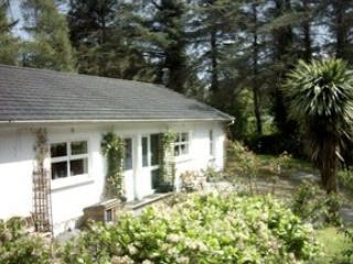 Nice Cottage with Internet Access and Satellite Or Cable TV - Killarney vacation rentals