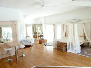 luxurious 100sqm studio 100sqm ,private entrance - Valbonne vacation rentals