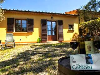 Nice Condo with Internet Access and Wireless Internet - Montescudaio vacation rentals