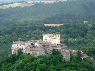 Romantic 1 bedroom Castle in Roccalvecce - Roccalvecce vacation rentals