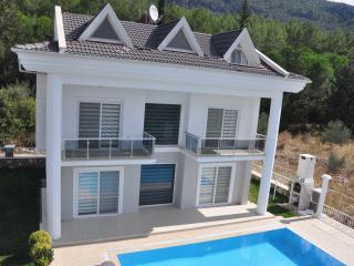 Angels View  Villa A2 - Fethiye vacation rentals