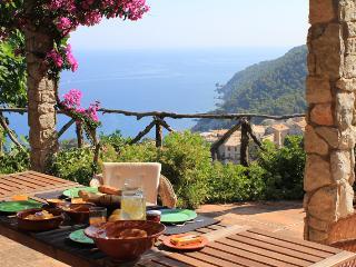 Casa Sa Vinya Banyalbufar - Banalbufar vacation rentals