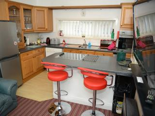 MILLENIUM CONDO 55sq Mtr BARRY CARDIFF PARK WIFI - Barry vacation rentals