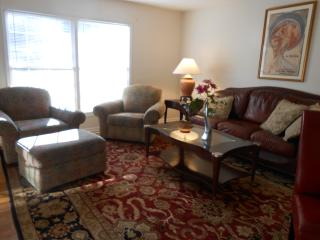 Beautiful Townhouse with Internet Access and Towels Provided - Marietta vacation rentals