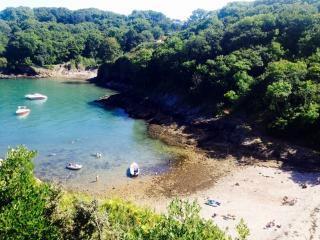 Dunlin 4, The Cove - Stoke Gabriel vacation rentals