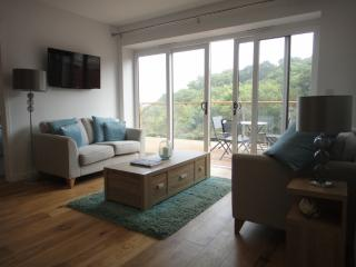 Puffin 2, The Cove - Stoke Gabriel vacation rentals