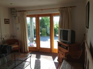 Comfortable 3 bedroom Wicklow Apartment with Internet Access - Wicklow vacation rentals