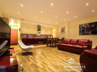 2 BDRM Tallinn apartment with parking & air conditioner - Tallinn vacation rentals