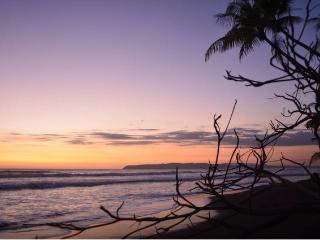Casa Marea Alta - Beachfront - Surfing Beach Break - Pavones vacation rentals
