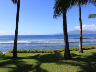 Oceanfront Paradise - Lahaina vacation rentals
