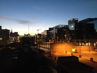 Downtown secured 2 bedroom 2 bathroom condo - Salt Lake City vacation rentals