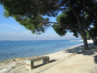 36011 A2(4+1) - Fazana - Fazana vacation rentals