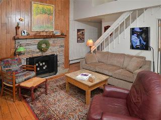 Cozy 3 bedroom Vacation Rental in Vail - Vail vacation rentals