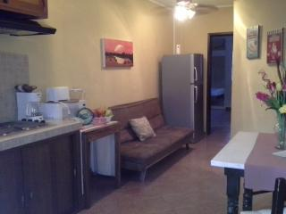 Nice Condo with Internet Access and Satellite Or Cable TV - Playa del Carmen vacation rentals