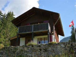 La Puce ~ RA8786 - Gstaad vacation rentals
