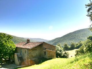 Comfortable Villa with Deck and Internet Access - Teverina di Cortona vacation rentals