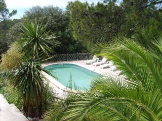 La Villa ANTHORINA  - LOVELY VILLA in PROVENCE - Uchaux vacation rentals