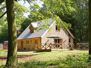 Nice Cabin with Deck and Internet Access - Ashby de la Zouch vacation rentals