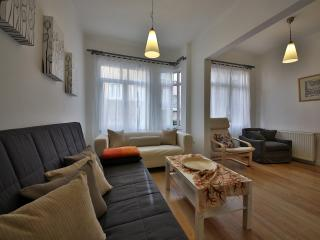 istanbu amedros suites with two Bedroom apartment - Istanbul Province vacation rentals