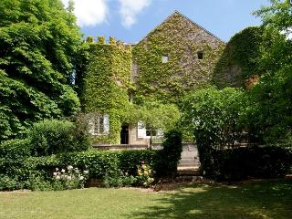 Nice Castle with Internet Access and Dishwasher - Yonne vacation rentals