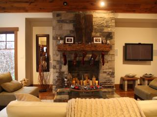 Stunning Home Along Hiking Trail, Walk to Ski Hill - Kitchener vacation rentals